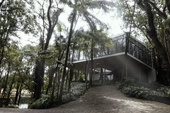 Casa de Vidro (F. Portella) Tags: linabobardi lina bo bardi casa de vidro glass house home modern moderna arquitetura architecture são paulo brasil brazil