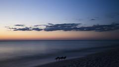Standing Still DSL6752 (iloleo) Tags: longexposure florida sunset beach barefootbeach gulfofmexico clouds seagull nature scenic seascape nikond7000