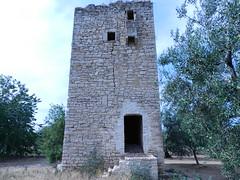 2esp 013 (carrubiepagghiari) Tags: giovinazzo bari puglia apulia italia italy campagna country side alberi trees carrubi pagghiari buildings tower