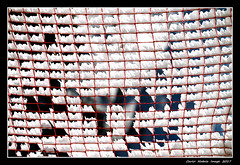 Abstractionism with snow - 24 (cienne45) Tags: carlonatale cienne45 natale italy abstract abstractionism abstractionismwithsnow snow astratto astrattismo neve