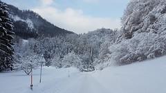 Steyrling - Austria (Been Around) Tags: steyrling snow hiver winter austria 2017 januar jänner österreich neuschnee street strase winterlandschaft upperaustria oberösterreich autriche eu europe europa oö a aut pyhrnpriel
