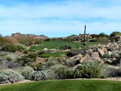 Troon North Pinnacle #5 from tee 385ed (tewiespix) Tags: troonnorth golfcourse golf pinnacle phoenix scottsdale arizona