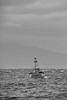 i'm only asking (Keith Midson) Tags: bicheno tasmania boat fishing coast coastline ocean sea water