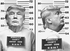Pussygrabber (Flamenco Sun) Tags: moron fascist fucktard creep arsehole motherfucker pussygrabber lockhimup criminal inauguration arrested trump