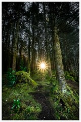 path way from darkenss (theclashcityrocker) Tags: fuji glencoe lochan scotland sunburst xt2 glencoelochan