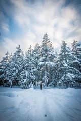 Leena (32 of 32) (napaeye) Tags: leena winter tahoe tahoekeys snow women model