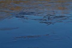 IMG_5064 (Scriblux) Tags: hiver froid gel gelée eau étang rivière givre glace surface cristal cristaux température saintsulpicelaurière folles bersacsurrivalier rocherolles limousin hautevienne gartempe