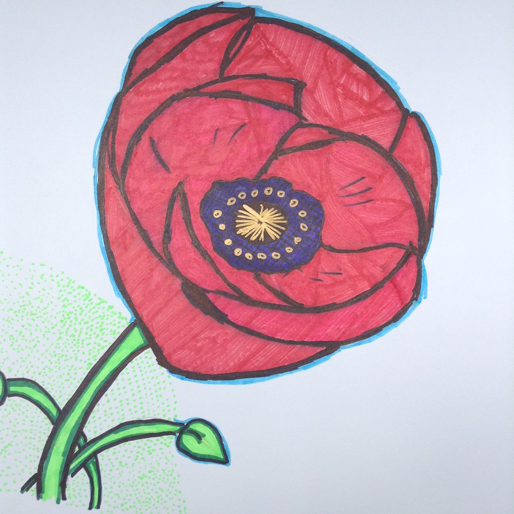 the world u0027s best photos of drawings and poppies flickr hive mind