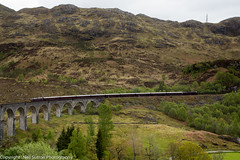 West Coast Railways 37516 - Glenfinnan Viaduct (Neil Sutton Photography) Tags: train scotland unitedkingdom railway loco locomotive glenfinnan scottishhighlands glenfinnanviaduct diesellocomotive westhighlandline royalscotsman class47 class37 dieselelectric 47832 luxurytrain wcrc westcoastrailways 37516 scotlandsrailway westcoastrailwaysmaroonlivery belmondroyalscotsman