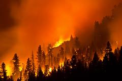 Washington Fire (trifeman) Tags: california summer june canon fire washington spring alpine tamron minden wildfire nfs markleeville carsonriver alpinecounty 2015 wildlandfire hwy4 humboldttoiyabenationalforest ndf tamron150600mm nvhtf030251 sierrafrontinteragency