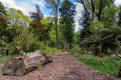 Mount Stewart Updated (allen.mark45) Tags: northernireland nationaltrust mountstewart codown ardspeninsula mjdallenphotos