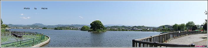 和歌山大池遊園-平池綠地公園 (20).JPG