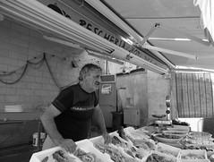 DSCF2078 (Silvia Bertuzzi) Tags: mercato puglia pescatore