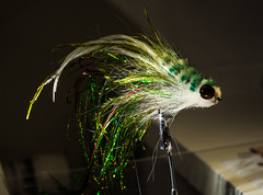 """Whoolhead - green • <a style=""""font-size:0.8em;"""" href=""""http://www.flickr.com/photos/43699293@N07/19873431803/"""" target=""""_blank"""">View on Flickr</a>"""