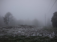 Ice rain (Bushman.K) Tags: rain fog winterpowerline