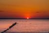 Sonnenuntergang auf Rügen (mr.wohl) Tags: abendrot entspannung erholung ferien himmelrot mecklenburg meer ostsee rügen sagard see sonne sonnenuntergang urlaub urlaub2016 vorpommern vögel weite