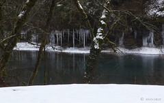 Icicles Over Oregon's Little North Santiam River (Joan Gray) Tags: icicles northfork