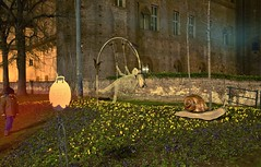 LIGHTNESS (only_sepp) Tags: torino centro aiuole sera erba fantasia paololivornosfriends