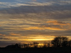 7055 Greatstone sunset (Andy - Busyyyyyyyyy) Tags: 20170113 ccc clouds greatstone kent silhouette sss sunset trees ttt
