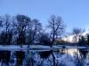 Wintermorning (Jenne Barneveld) Tags: winter tree trees cold morning sunrise outdoor stillness wintermorning
