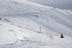 DSC_4973 (Dan_lazar) Tags: יום ski hermona mountain nature north israel snow שלג חרמון הר צפון גולן ישראל לבן אנשים