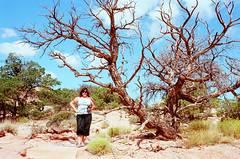 USA_2007-1027 (vambo25) Tags: canyonlands nationalpark utah