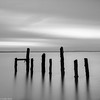 Old jetty (Donard850) Tags: oldpier countydown sea northernireland poles strangfordlough