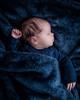 Will - 17 Days Old (MorboKat) Tags: newborn baby babyboy infant cute sleep sleepy sleeping sleepybaby blue fuzzy blanket