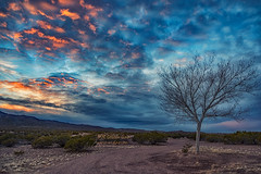 Sunset (inlightful) Tags: sunrise sunset morning evening clouds sky weather outdoors nature tree baretree winter southwest rural socorrocounty newmexico
