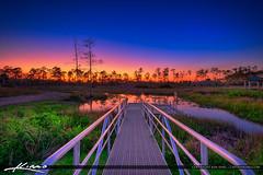 Cypress Creek South Natural Area Sunset Jupiter Florida (Captain Kimo) Tags: aurorahdr2017 captainkimo cypresscreeksouthnaturalarea easyhdr florida hdrphotography jupiter lovefl nikhdrefx sunset wetlands floirda