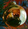 MacroMondays (Argentarius85) Tags: macromondays macro mondays sigma 105mm reflection christmas glitter ball bokeh germany deutschland spiegelung makro weihnachten happy christbaumkugel closeup