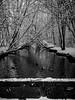 """Into the unknown..."" (Terje Helberg Photography) Tags: bw fyllingsdalen ortuvatnet blackandwhite bnw duck ducks landscape landskap monochrome natur nature snow tree trees winter norway hordaland bergen"