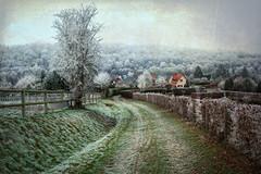 Campagne Rouennaise, Normandie, janvier (Air'L) Tags: hiver normandie france seinemaritime rouen campagne chemin paysage
