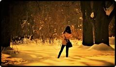 Lost in the frozen forest (Ioan BACIVAROV Photography) Tags: bacivarov ioanbacivarov bacivarovphotostream interesting beautiful wonderful wonderfulphoto nikon woman women girl girls fille filles fata fete fashion moda mode white snow neige zapada amazing minunat landscape tree copac arbre forest padure sunset contrejour