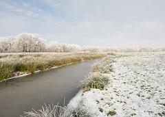 Mooi licht. (Geziena) Tags: helaas allesweerbijnaweg wintersplaatje winters winter cold koud mooi natuur landscape water beek bomen vorst rijp sneeuw wit witte wereld snow olympus omdem1 1240mm 28