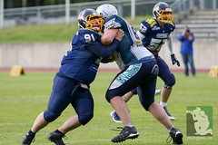 "RFL15 Assindia Cardinals vs. Remscheid Amboss 30.05.2015 027.jpg • <a style=""font-size:0.8em;"" href=""http://www.flickr.com/photos/64442770@N03/18125451680/"" target=""_blank"">View on Flickr</a>"