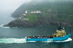 Harbour, St. John's (roymondus) Tags: mist fog newfoundland harbour stjohns