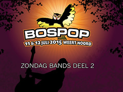 zon-bands-2