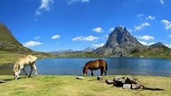Ibn de Ayous (jaecheve) Tags: france caballo lac midi francia pyrenees pirineos pirineo ibon ayous dossau