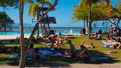 """cairns-people-and-culture_31822449976_o • <a style=""""font-size:0.8em;"""" href=""""http://www.flickr.com/photos/146187037@N03/31602096160/"""" target=""""_blank"""">View on Flickr</a>"""
