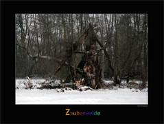 ub-00070 (Weinstöckle) Tags: märchenwald pixelwelt weide bruchwald eis schnee winter enz