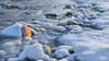 Rocks on ice (Explored 7. Jan. 2017) (Role Bigler) Tags: canoneos5dmkii ef282470lusm emmental landschaft riveremme rock rocks rocksonice schnee schweiz suisse switzerland cold frozen frozenriver frozenwater landscape river snow winter aria