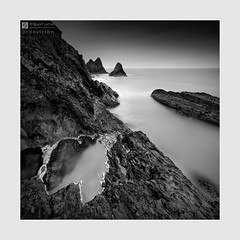 Ordovician - The Sketches # 52 (Stuart Leche) Tags: algae blackwhite coast coastal geology irishsea landscape monochrome pembrokeshire pond pool rocks sea seascape stack stuartleche unitedkingdom wwwstuartlechephotography