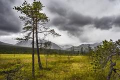 Norwegian Colors (georg19621) Tags: season summer landscape mountains norwegen