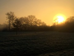 Misty Sunrise (Heaven`s Gate (John)) Tags: misty morning sunrise dickensheath johndalkin heavensgatejohn solihull england december trees silhouette sun misy nature landscape atmosphere frost field reserve grass
