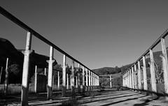 Glen Davis 14 (PhillMono) Tags: nikon dslr d7100 australia new south wales glen davis history heritage ruin abandoned relic ghost town black white sepia monochrome light shade column pillar shadow