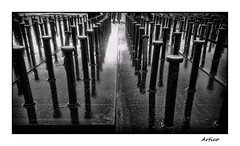 The soldiers (Artico7) Tags: steel nelson studs nelsonstuds weld welded beams concrete reinforcement aligned soldiers strong rusty rusted wed water rain reflection glare bw blackwhite blackandwhite biancoenero monochrome sony xperia z2