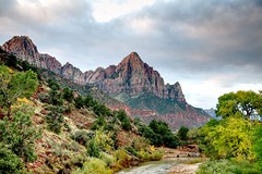 From the River to the Mountaintop (Herculeus.) Tags: 2016 bouldersstonerocks country day diciduoustrees evergreens fall flowersplants landscape landscapes northforkofthevirginriverut oct outdoor outdoors outside raw river rockwall scrub trees ut zionnp mountainside rock rockformation hill mountain 5photosaday