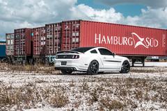 White Mustang GT/CS on Velgen Wheels Classic5 Matte Gunmetal 20x9 & 20x10.5 (VelgenWheels) Tags: velgen velgenwheels ford mustang fordmustang s197 californiaspecial white whitemustang mustangwheels s197mustang s197wheels automotive automotivephotography americanmuscle dopewhip wheels wheelfitment wheelporn deepconcave concave mustangmods velgensociety classic5 germany australia southamerica 18wheeler trucks alloywheels dailydriven slammed slammedstangs