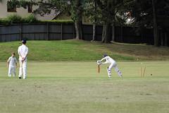 Ynysybwl Cricket Club - Fixture 23.07.16 (garlicsauce99) Tags: cricket ball bat fielder bwl d3300 field wicket bails game grass nikon out sport team uk village wales ynysybwl